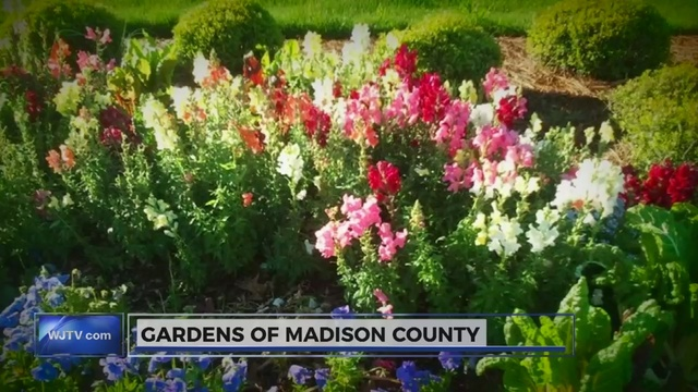 What\'s Working: Gardens of Madison County