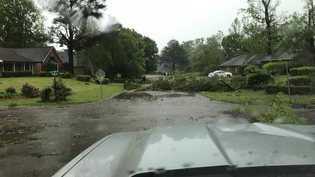 NWS identifies five official tornadoes, gives damage account